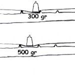 weights (1)