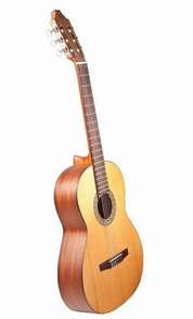 http://www.guitarsara.com/wp-content/uploads/2013/09/454.jpg